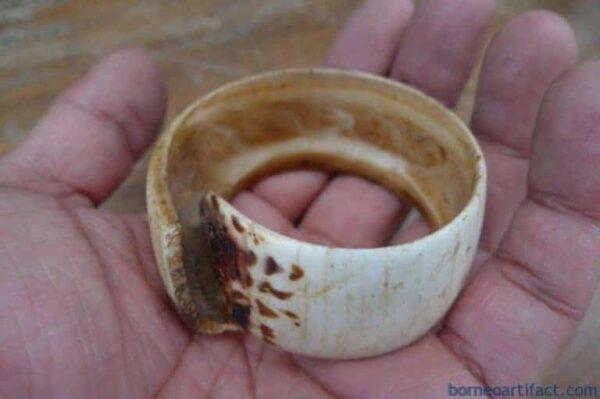 FREE SHIPPING 60mm DAYAK BANGLE Seashell WRIST BRACELET Jewel Jewelry Borneo #6