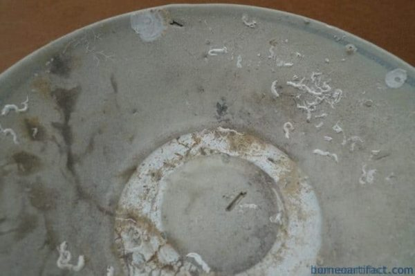 MING DYNASTY (1368-1644) DISH / BOWL / PLATE Great Ming Underwater Artifact #1